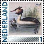 Netherlands 2011 Birds in Netherlands a12