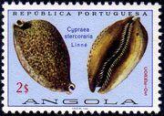 Angola 1974 Sea Shells g