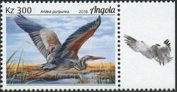 Angola 2018 Wildlife of Angola - Water Birds d