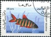 Afghanistan 1986 Fishes f