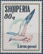 Albania 1973 Sea Birds f
