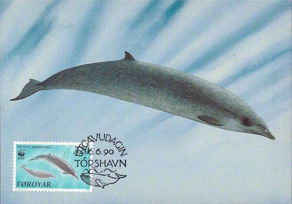 Faroe Islands 1990 WWF - Whales q