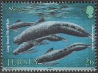 Jersey 2000 Marine Life IV - Marine Mammals b