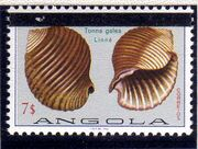 Angola 1981 Sea Shells Overprinted n