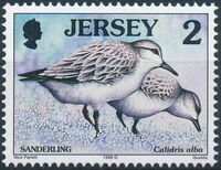 Jersey 1998 Seabirds and waders (2nd Issue) a