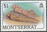 Montserrat 1988 Sea Shells j