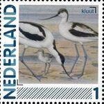Netherlands 2011 Birds in Netherlands a31