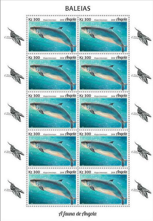 Angola 2018 Wildlife of Angola - Whales Sd