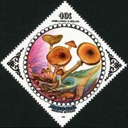 Mongolia 1985 Mushrooms c