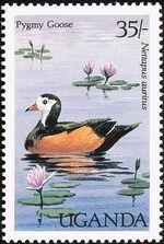Uganda 1987 Birds of Uganda e