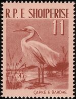 Albania 1961 Albanian Birds c