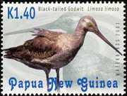Papua & New Guinea 2001 Waterbirds d