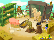 K-new petting zoo