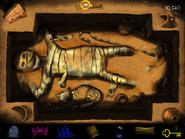 Mummy uncovered