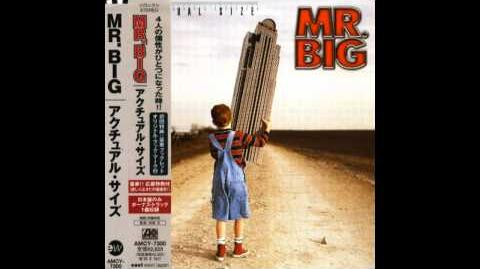 Mr Big - Shine
