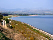 Israel's Galilee nw fjenkins 121109 39t