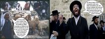 Zionists-Israelis-Jews vs. ''palestinians''-arabs on the debate who'se descendant of Canaanites