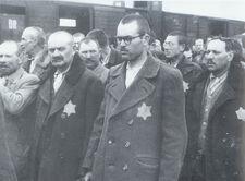 Classic Auschwitz photographs