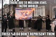 Ultra-orthodox haredi Hebrews-Israelites-Jews who are self-haters due to living in exile other than in Israel don't represent Judaism nor can tell Zionists-Israelis what's right