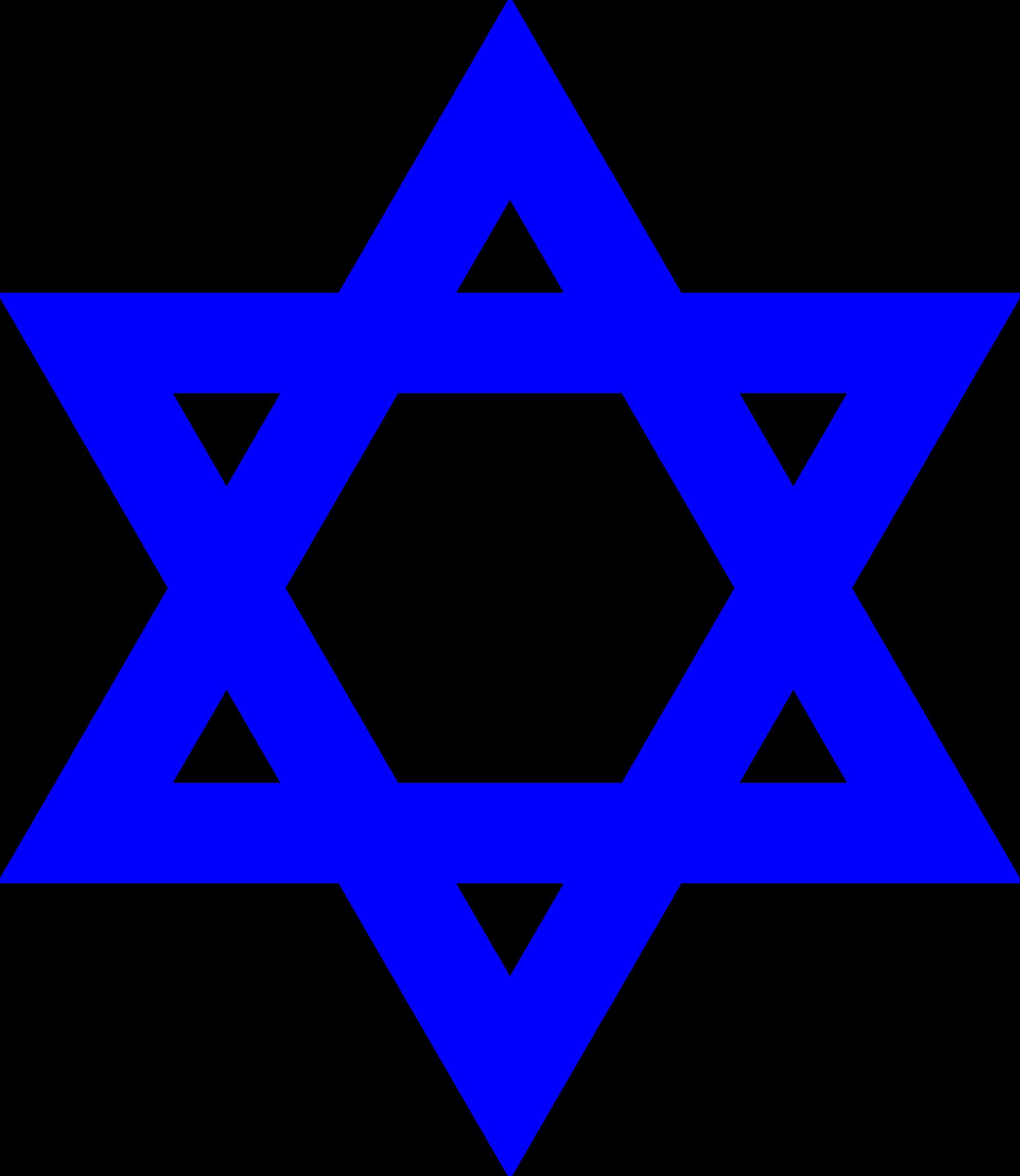 Ornithogalum umbellatum (Star of Bethlehem) - BBC