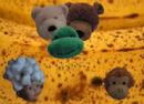 Fransisco's Disturbing Discovery Screenshot