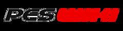 PES Wiki logo