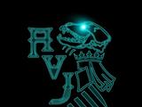 Asociación Valenciana de Jugger