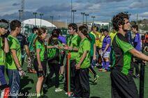 Green Flame Hidras Winter Cup 2014