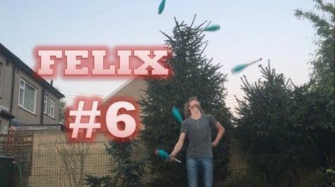 Felix -6