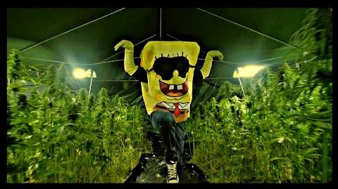 SpongeBOZZ - Planktonweed ►Planktonweed Tape 17.04.2015◄ prod