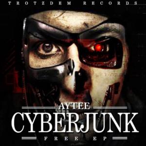 Aytee Cyberjunk