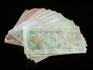 Jumanji Bank Notes