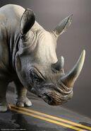 Jumanji-Rhino-ILM-Model-Display-with-Info-Sheet-3