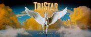 TriStar logo