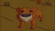 Jumanji Lion Cub
