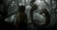 Kaa & Mowgli