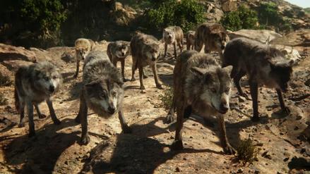 Wolf Pack (Disney 2016)