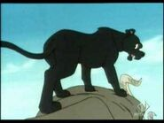 Bagheera Hunting
