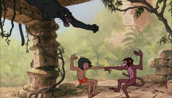 Bagheera the Black Panther is trying to get Mowgli