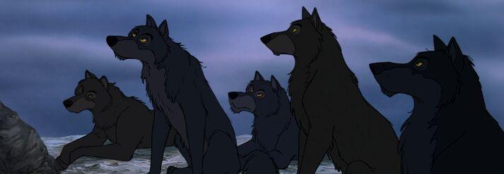 Wolf Pack (Disney)