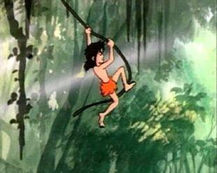 Mowgli Swinging