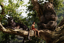 Disney The Jungle Book (2016) Mowgli, Baloo and Bagheera