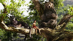 3056512-poster-p-1-want-to-vacation-like-mowgli-in-jungle-book-airbnb-has-treehouses-at-the-ready