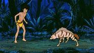 Mowgli vs. Tabaqui