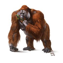 Gigantopithecus 3