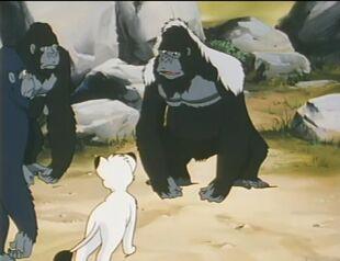 Jungle Emperor 89