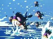 JEL-Piranhas