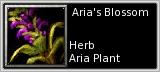 Aria petal quick short