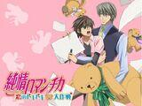 List of Junjou Romantica Episodes