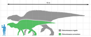 Edmontosaurus scale